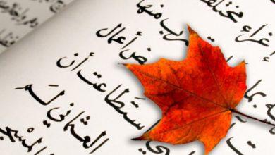 Photo of ساخر سبيل : كل عام وأنتم بخير بيوم  كندا الوطني .